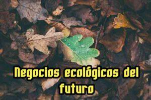 negocios ecológicos del futuro