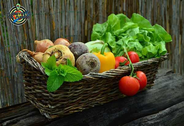alimentos que te ayudan a no envejecer