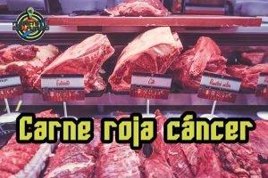 carne roja produce cáncer