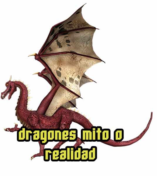 dragones mito,  realidad o nunca existieron