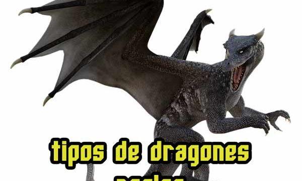 ¿Los dragones existen o existieron? ¿mito o realidad?