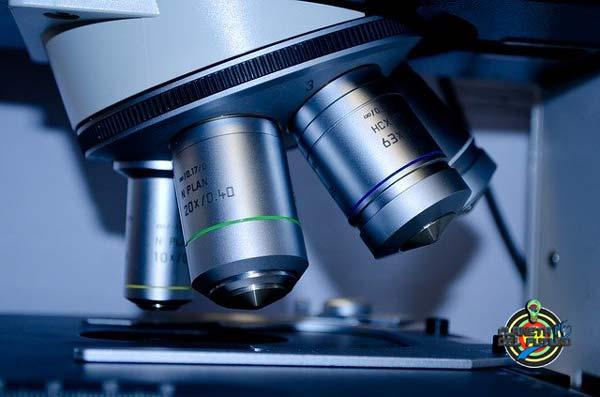 biotecnologia donde se estudia