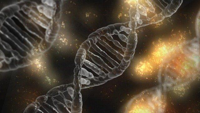 donde estudiar biotecnologia en españa