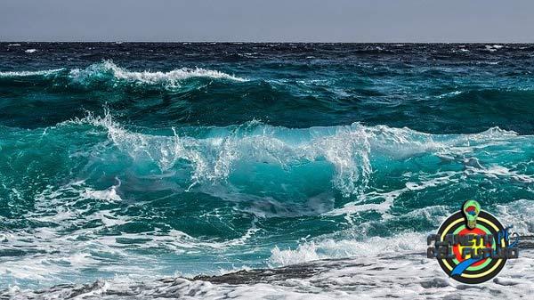 donde estudiar ciencias del mar en españa